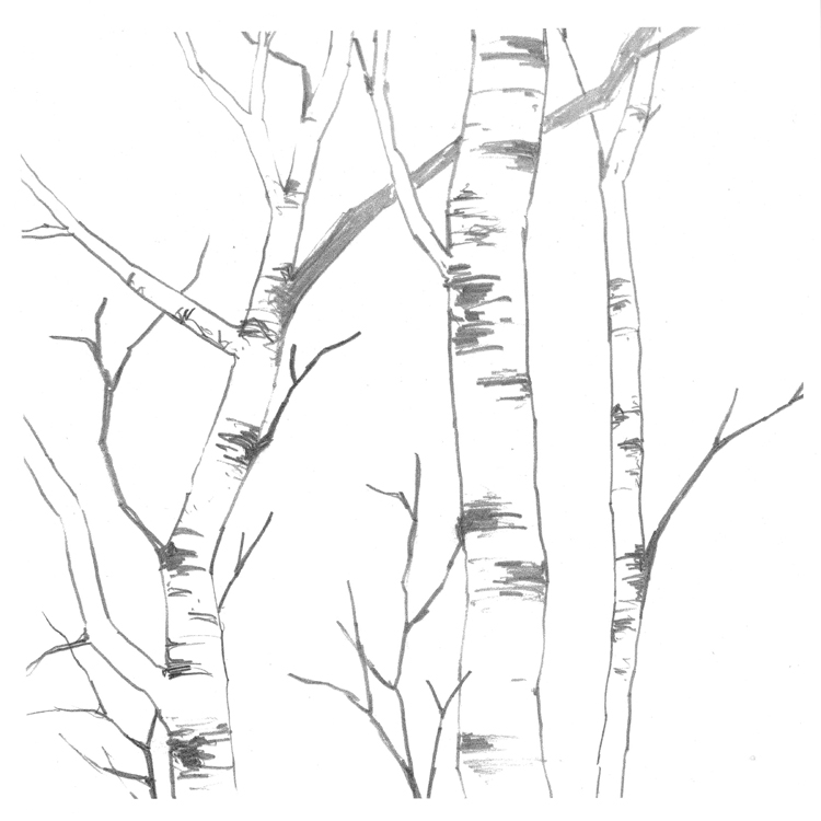Just Lines Demo 44