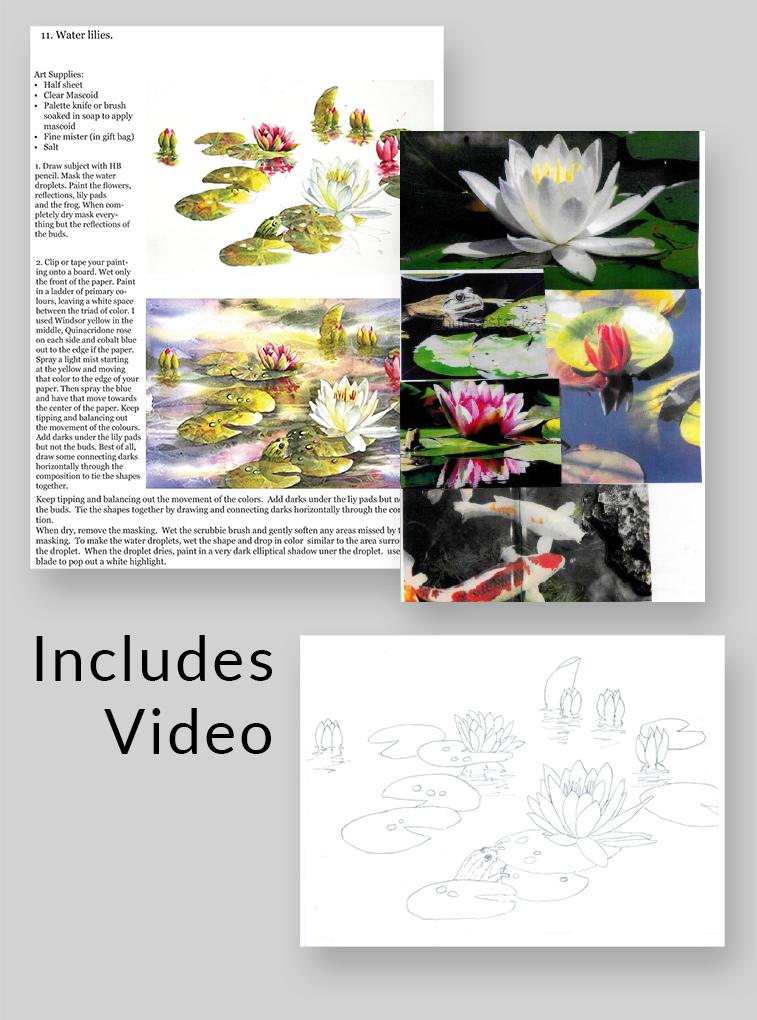 Waterlilies Video Kit