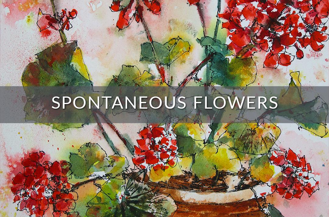 Spontaneous Flowers (Geraniums) Video Kit