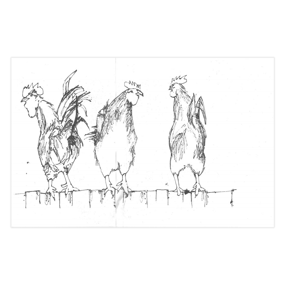 Just Lines w/ Reference Roosters