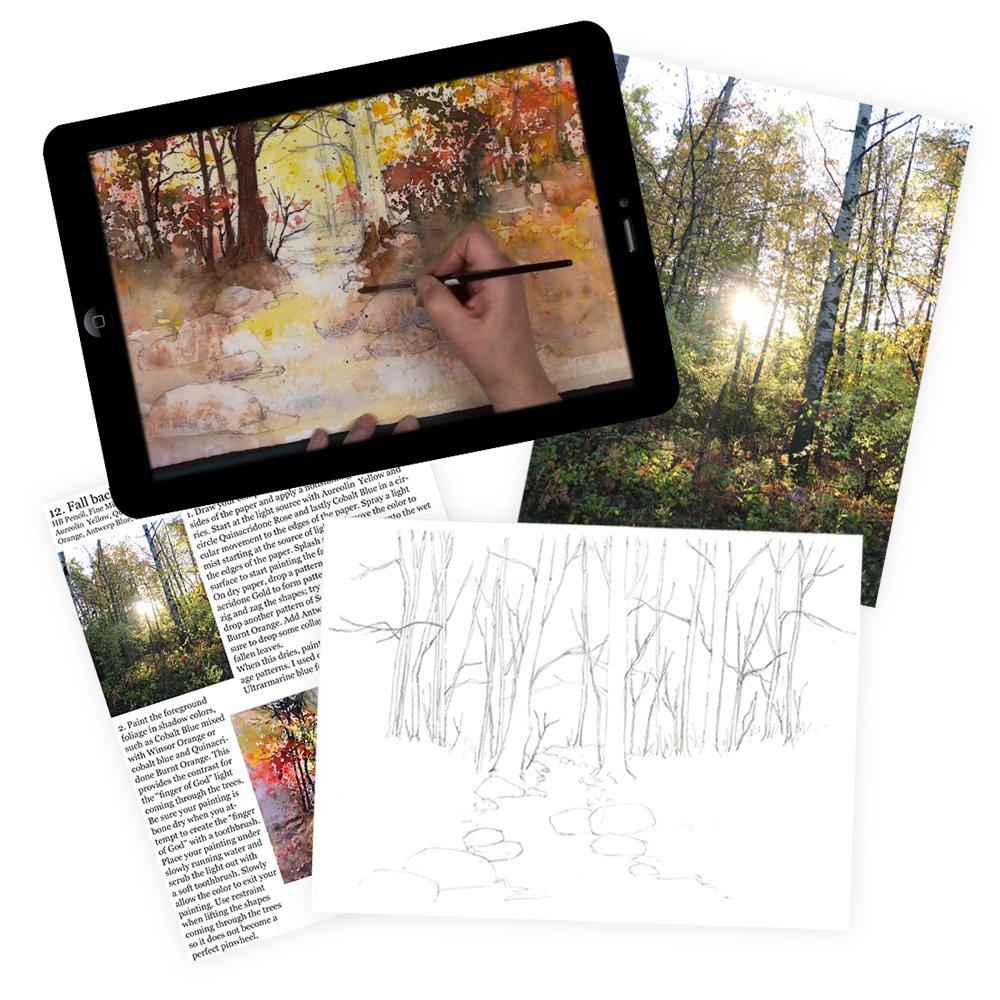 Karlyn Yellowbird Gallery Video Kits