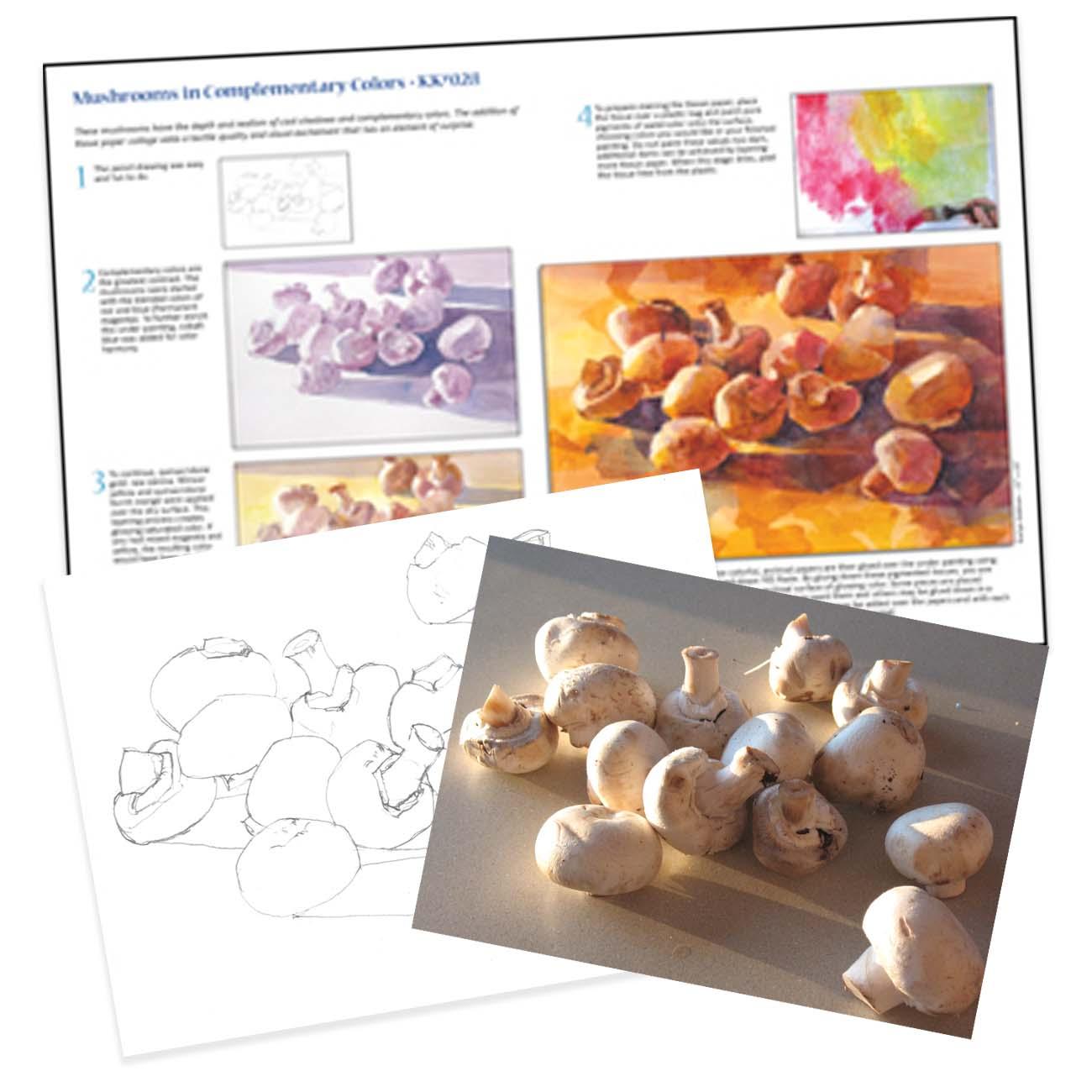 KK028 Mushrooms