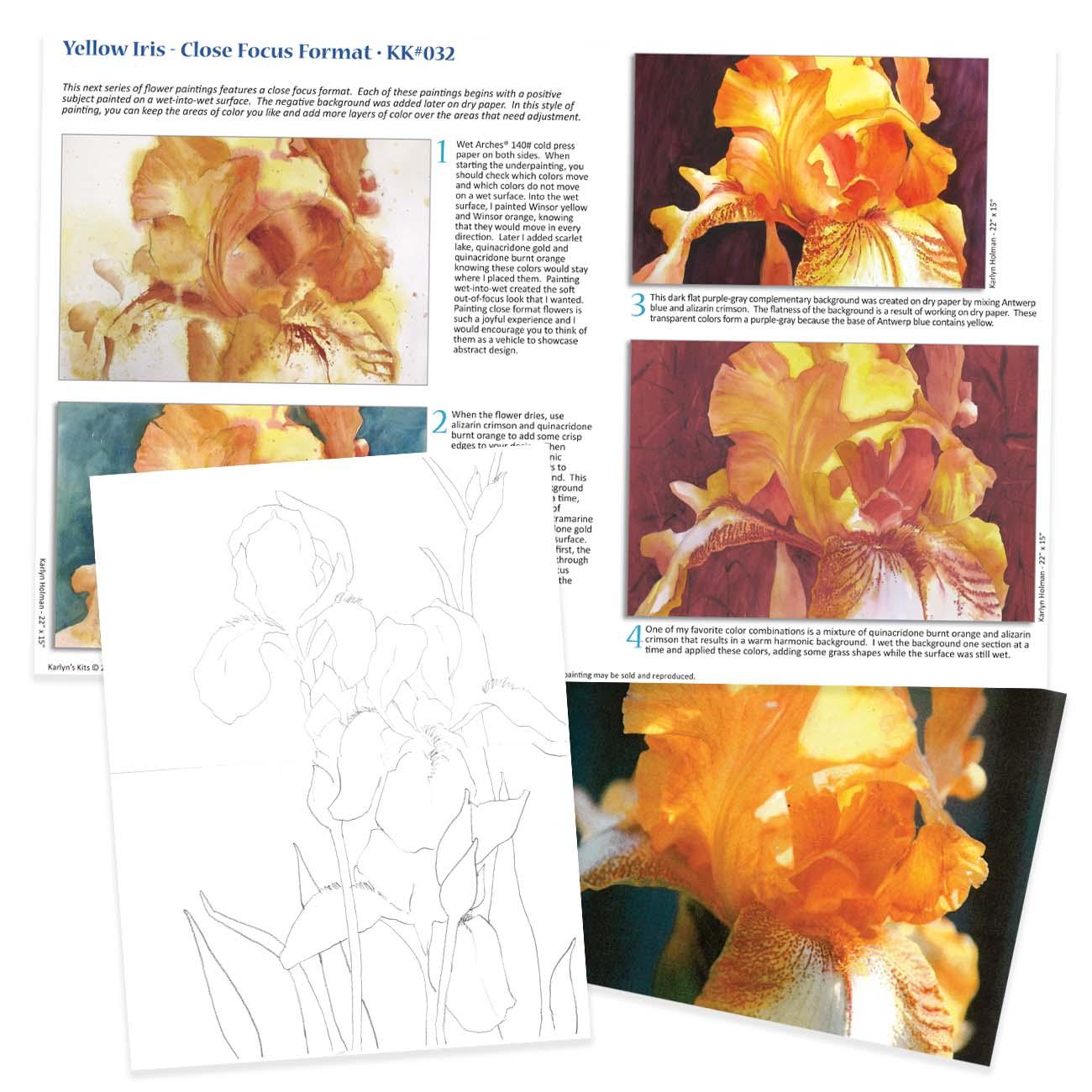 KK032 - Yellow Iris, Close Focus