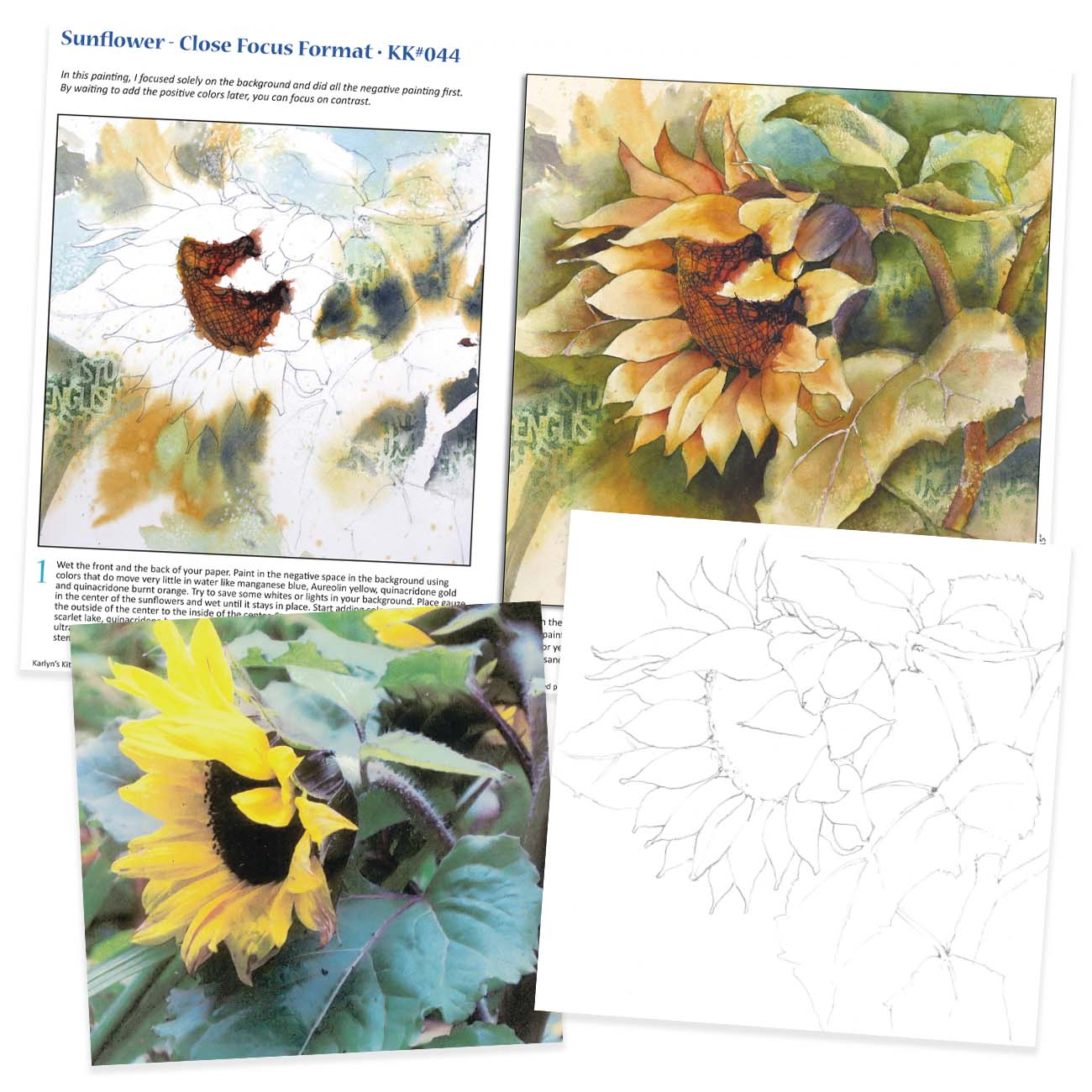 KK044 Sunflower - Close Focus