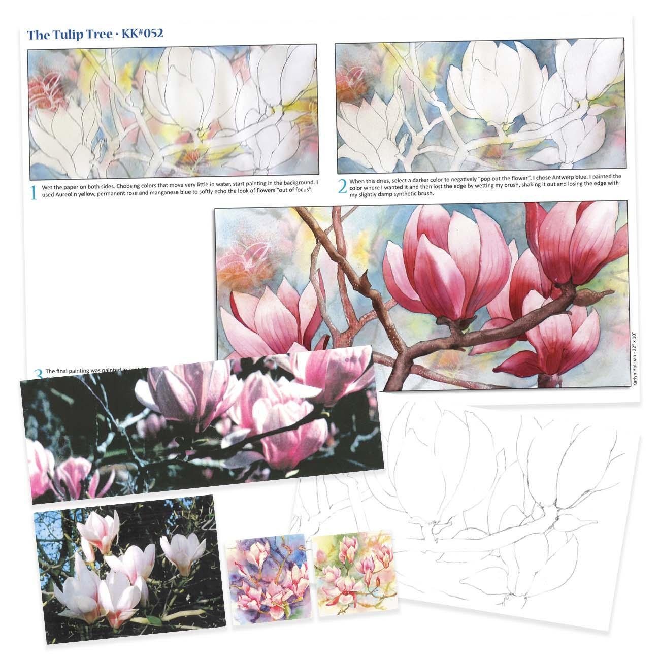 KK052 The Tulip Tree