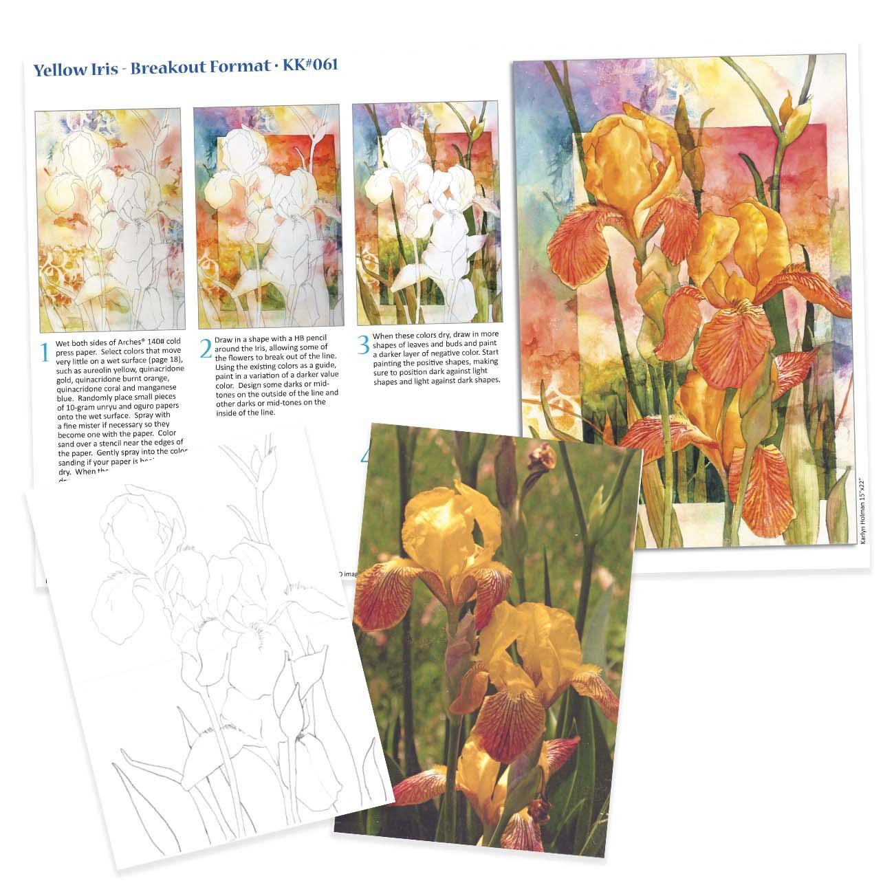 KK061 - Yellow Iris, Breakout Format