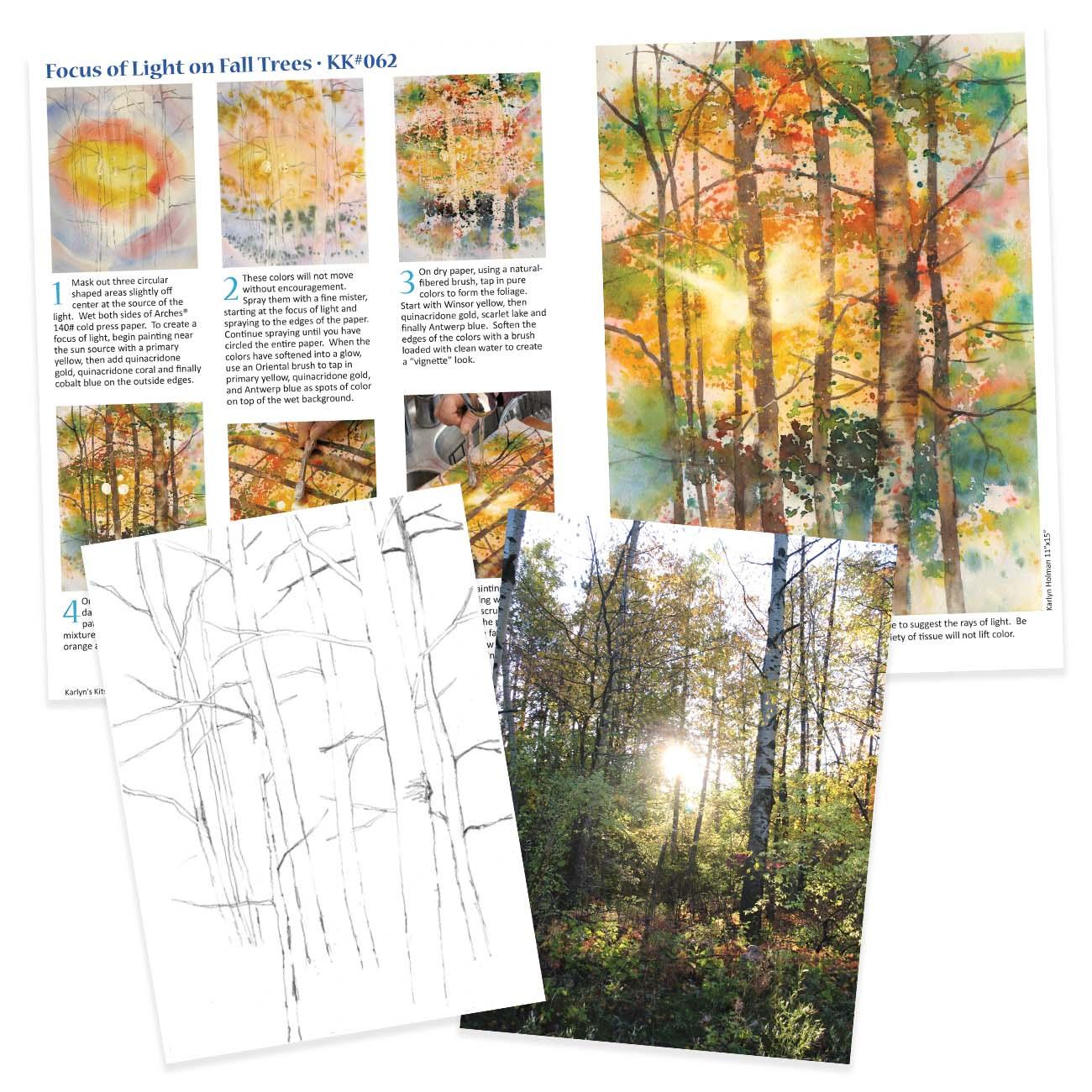 KK062 - Focus of Light on Fall Trees