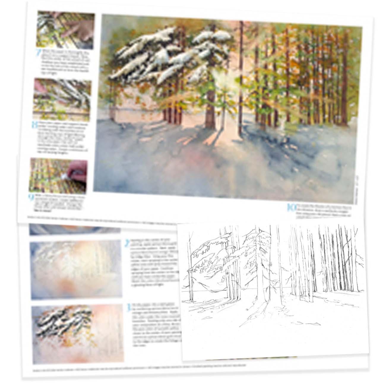 KK079 - Focus of Light on Winter Trees